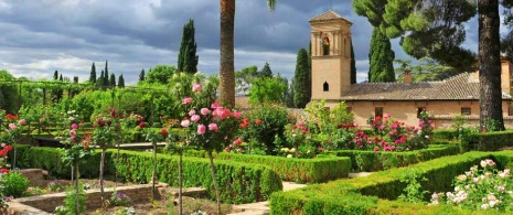 Gardens of the Parador de San Francisco, at the Alhambra in Granada