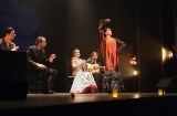 Espectáculo de flamenco en el Teatro Flamenco de Madrid