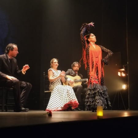 Pokaz flamenco w Teatro Flamenco Madrid