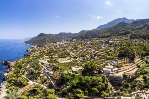 Panoramic view of Banyalbufar (Mallorca, Balearic Islands) with its characteristic terraces