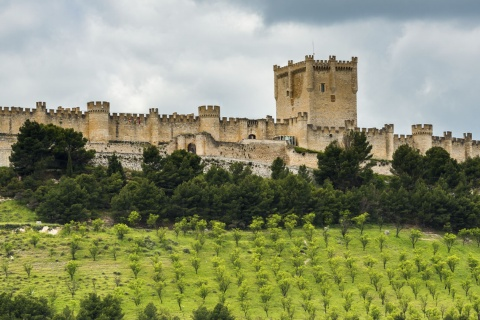 View of Peñafiel Castle in Valladolid (Castilla y León)