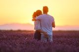 Couple in the lavender fields of Brihuega in Guadalajara