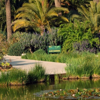 Botanical Garden in Barcelona