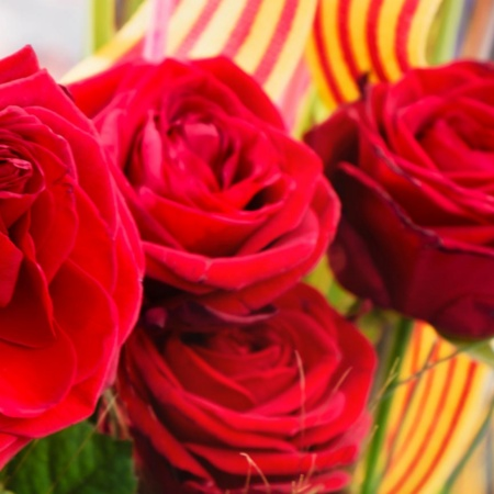 Bouquet of roses on Sant Jordi day. Barcelona