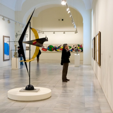 Man admiring the works at the Reina Sofía Museum, Madrid