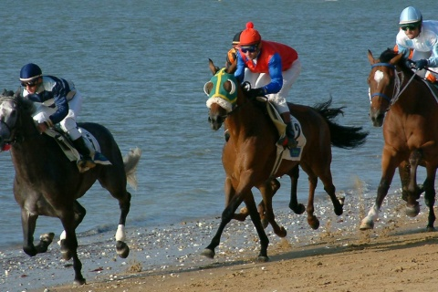 Horse races on the beach
