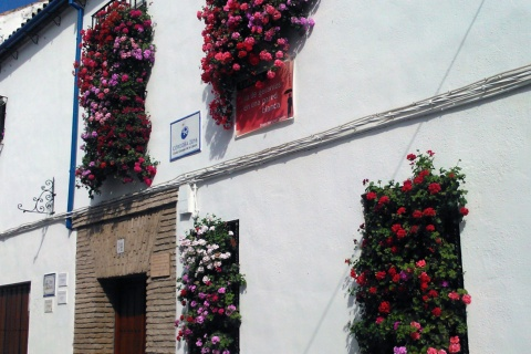 Wrought Iron Grilles and Balconies Competition in Cordoba