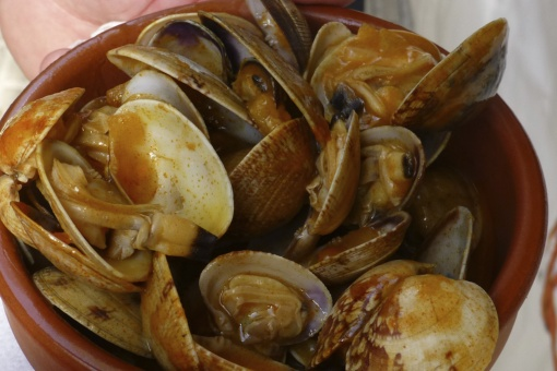 Cazuela de almejas (clam casserole), one of the traditional dishes at the Seafood Festival in O Grove (Pontevedra, Galicia)