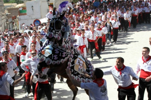 The Wine Horses of Caravaca de la Cruz