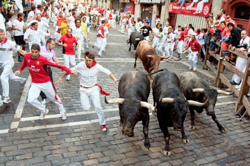 Running of the bulls in the fiestas of San Fermín in Pamplona (Navarre)