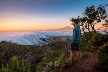 Views of the park with the sea of clouds and Mount Teide in the background