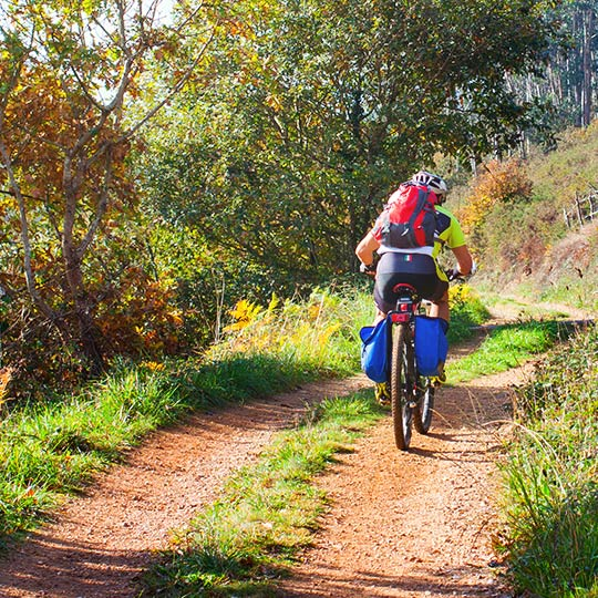 Cyclist on a forest trail in Asturias