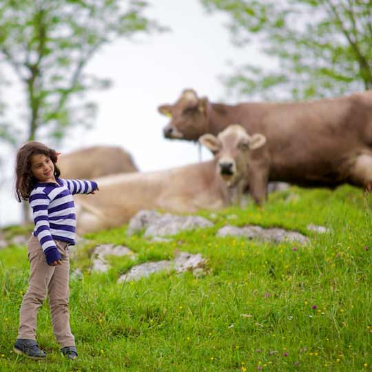 Agrotourism for families in Asturias