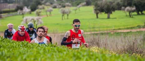 Sol Half Marathon, Magaluf © Rafa Babot. Photos courtesy of ICE Institut Calvianer d