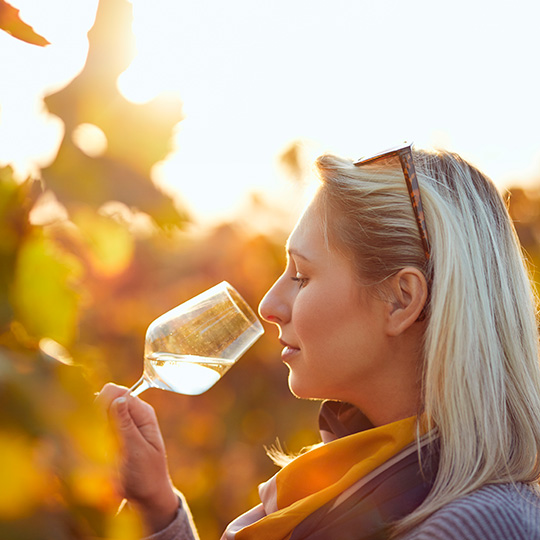 Young woman tasting wines
