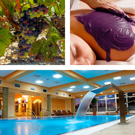 Weinberge in La Rioja, Weintherapie und Therme