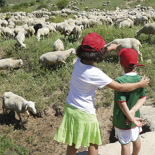 Agrotourism for families in Navarre