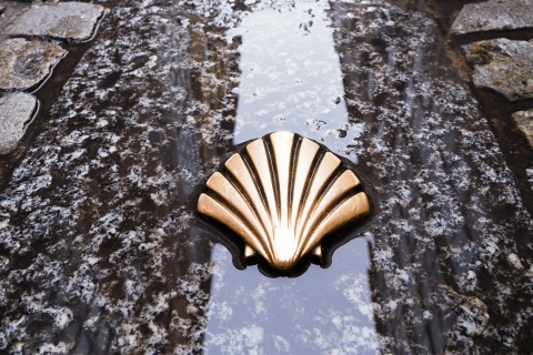 Shell on St James