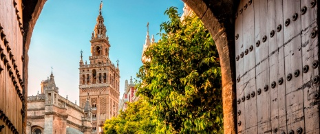 View of La Giralda tower in Seville