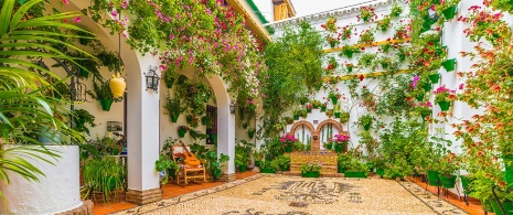 A courtyard in Cordoba